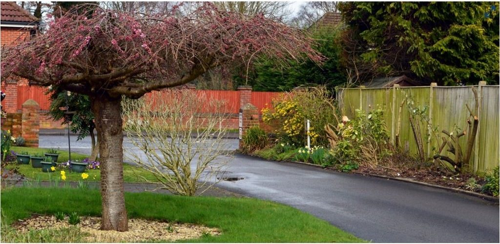 Residential Park Homes For Sale (3)