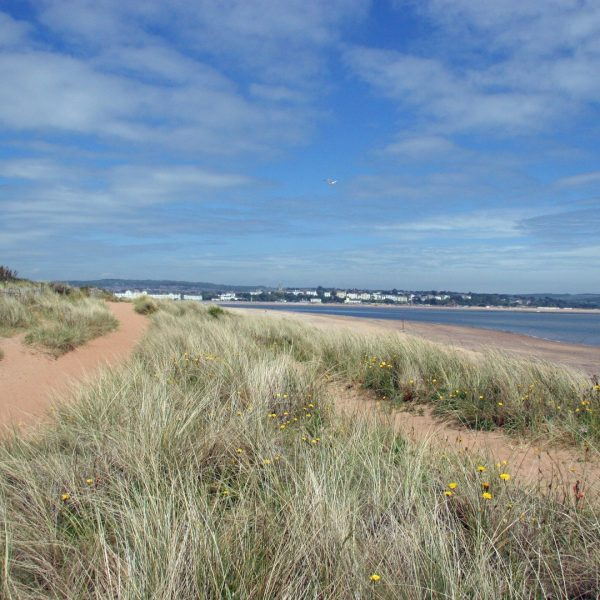 Golden Sands (copy)